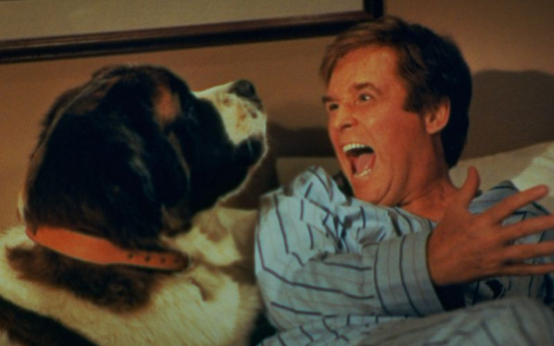 Beethoven: Un câine puţin prea mare