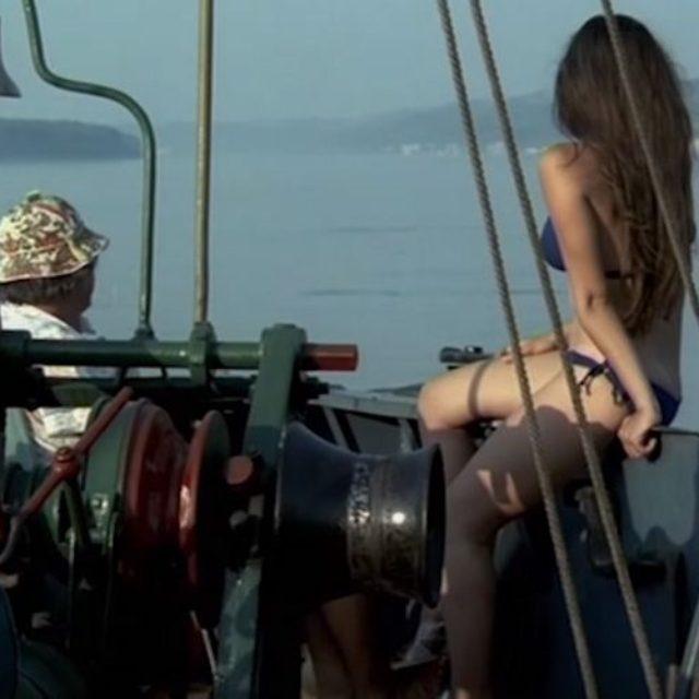 Croaziera (1981)