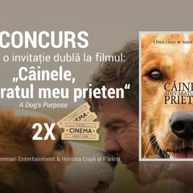 """DINFILME.RO şi Freeman Entertainment te invită la filmul """"Câinele, adevăratul meu prieten"""""""
